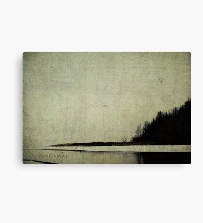 Winter's Shores Canvas Print