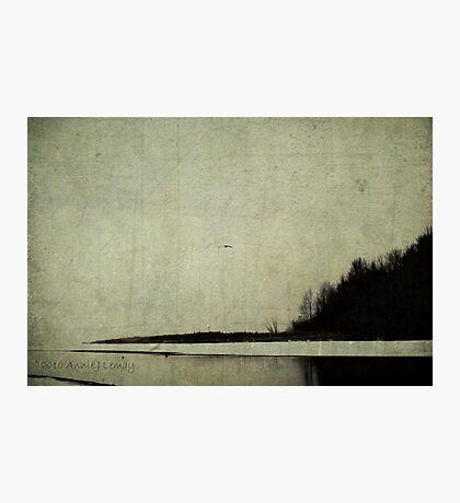 Winter's Shores Photographic Print