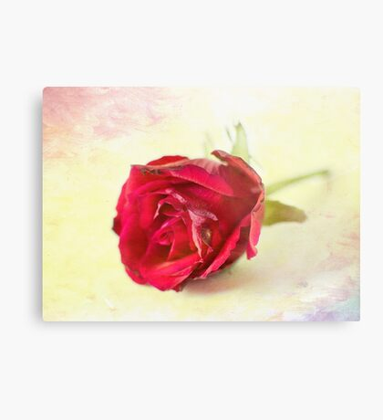 Imperfection is beauty Metal Print