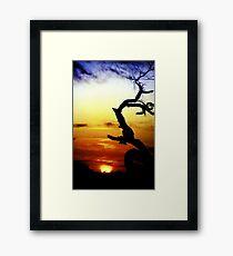 Desert Framed Print