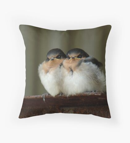 Swallow Chicks Throw Pillow