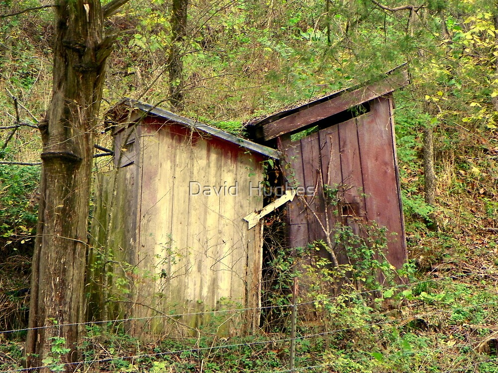 """Double """"Out Houses"""" in Hillbilly Lands, N.W. Arkansas by David  Hughes"""