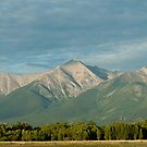 Mount Princeton, Colorado At Sunrise by Gregory J Summers