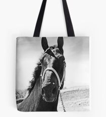 Percheron Posing Tote Bag