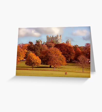 Wollaton Hall and Deer Park Nottingham Greeting Card