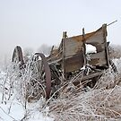 Wagon in Fog and Snow by Jerry Walter