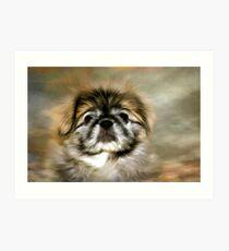 Max the Pekingese Art Print