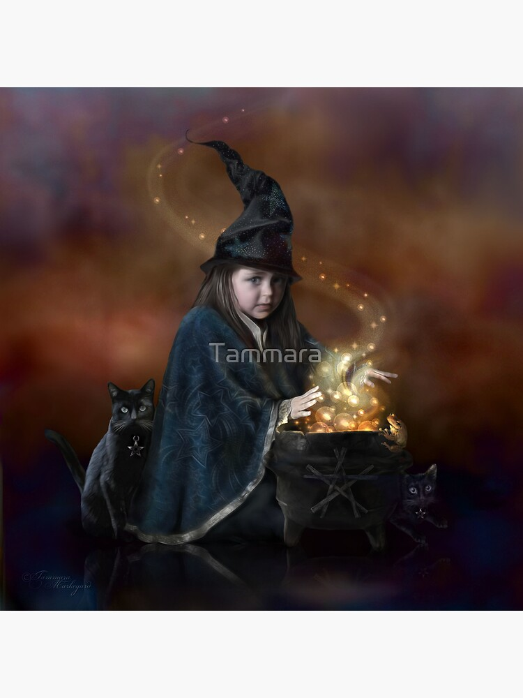 The Little Witch by Tammara