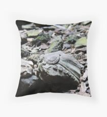 Shattered Remnants Throw Pillow