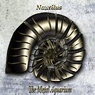 Nautilus  The Metal Aquarium by KOKOPEDAL