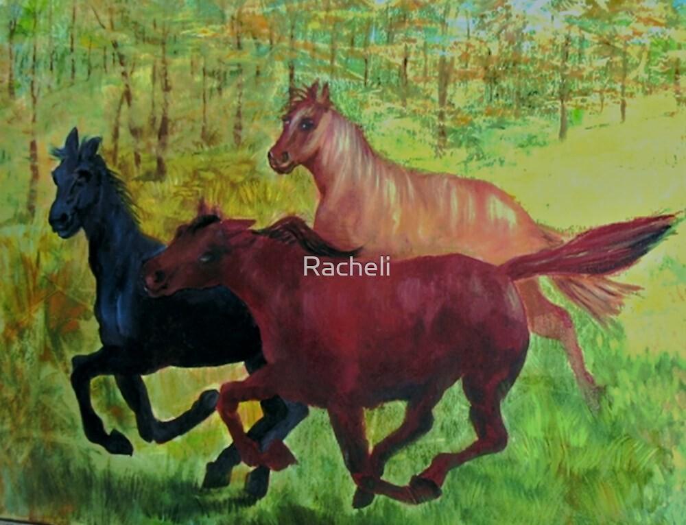 Spring Meadowland by Racheli