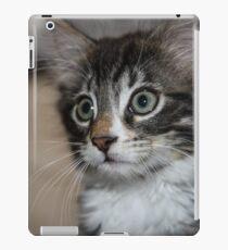 Kitten Love iPad Case/Skin