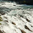 Banff Springs Rapids, A Fast Flow by Roger Bernabo