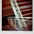 Stairs Polaroïd by laurentlesax