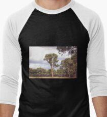 Stately Eucalyptus Tree Men's Baseball ¾ T-Shirt