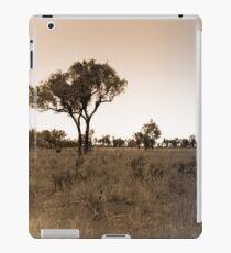 Lonely Landscape iPad Case/Skin