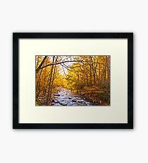 End of Fall! Framed Print