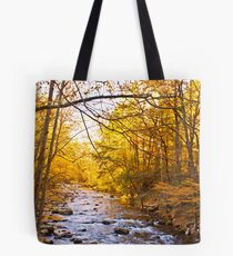 End of Fall! Tote Bag