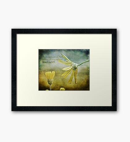 A life without love, is like a flower without sunlight Framed Print