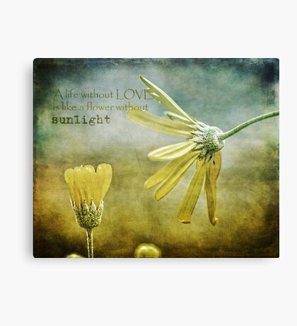 A life without love, is like a flower without sunlight Canvas Print
