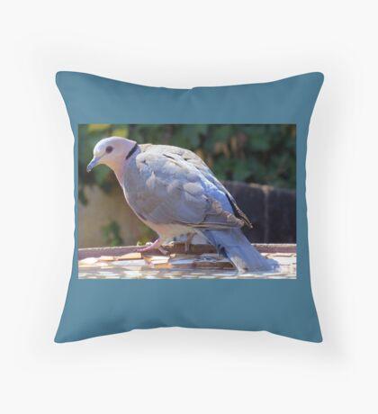 Tortelduif Throw Pillow