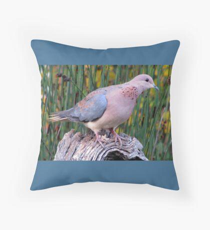 Lagduif / Laughing Dove Throw Pillow