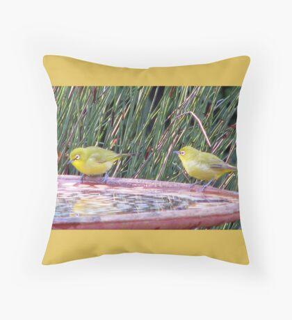 Cape White-eye Throw Pillow