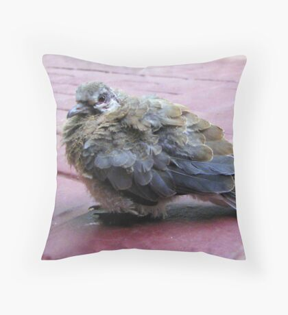 A baby dove Throw Pillow