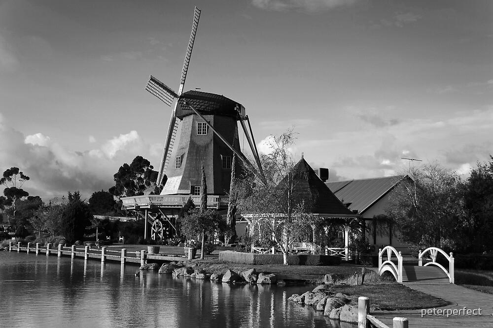 Windmill Mono by peterperfect