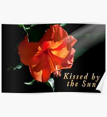 Kissed by the Sun Card Poster