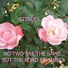 SISTERS... by linmarie
