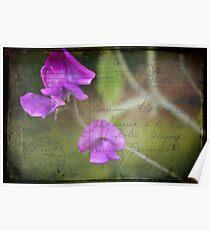 Send me no flowers Poster