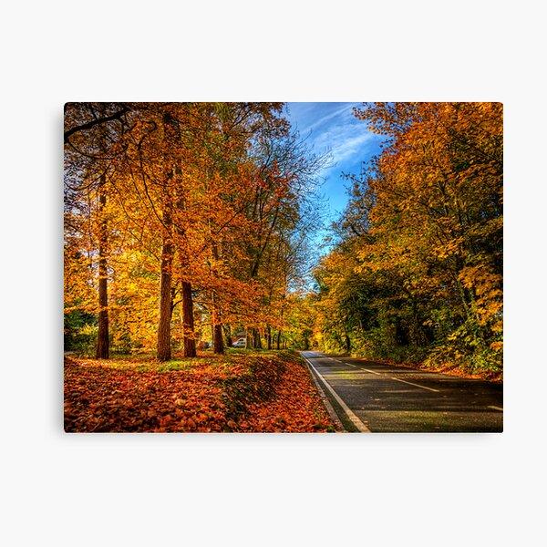 Winchester Autumn Colour Canvas Print