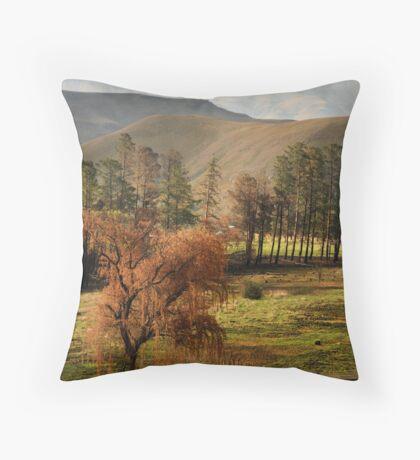 Drakensberg, South Africa Throw Pillow