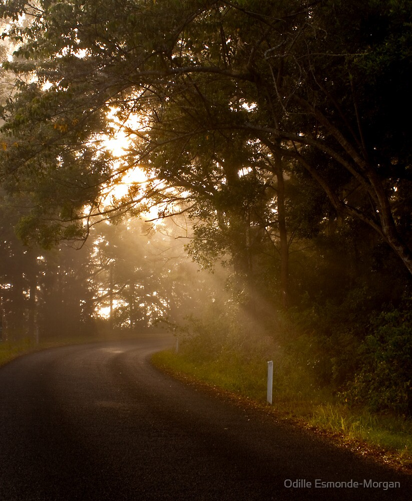 By the Dawn's Early Light, Doon Doon NSW by Odille Esmonde-Morgan