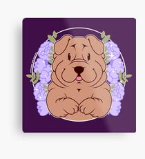 Furrow the Shar Pei Metal Print