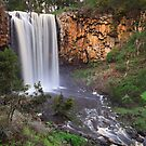 Trentham Falls by Jared Revell
