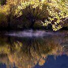 Autumn, a dream walker  by Brian Bo Mei