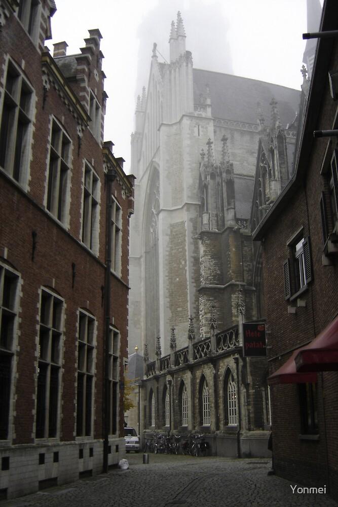 Sint-Romboutskathedraal, Mechelen, Belgium by Yonmei