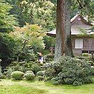 Temple Garden, Ohara, Kyoto,Japan by johnrf