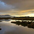Marion Bay Wetlands by CezB