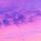 Bright Purple Summer Sunset by AlexandraStr