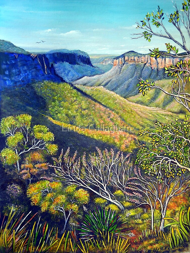 Govetts Leap Lookout, Blue Mountains by Linda Callaghan