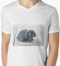 Funny Rabbit Men's V-Neck T-Shirt