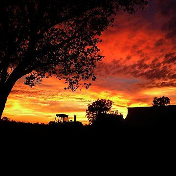 Sunrise over Brumby Station by AlexJeffery