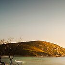 Wilsons Promontory, Gippsland  by James  Archibald