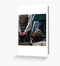 Hounds. Greeting Card