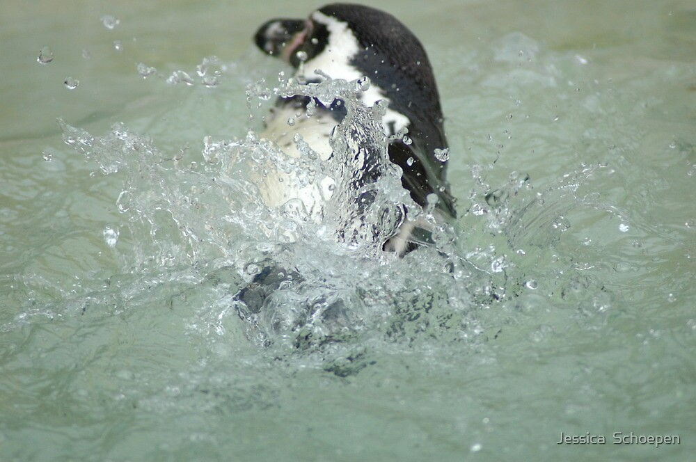 Penguin... by Jessica  Schoepen