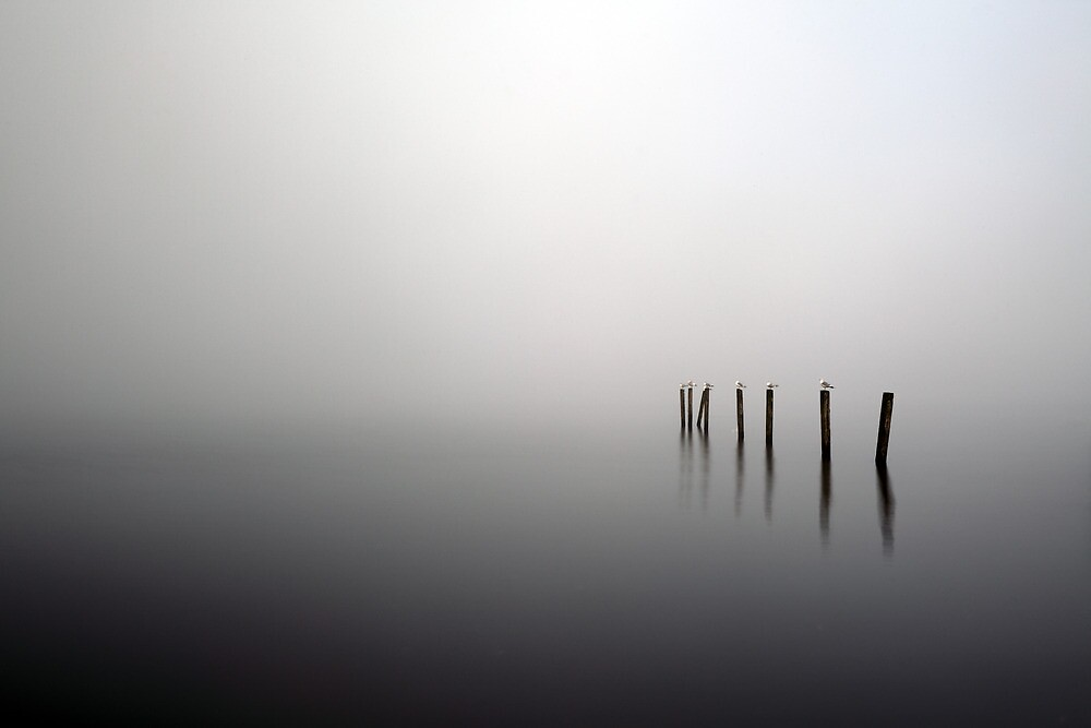 Duckbay marina by Grant Glendinning