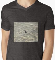 Wedge-Tailed Eagle Soaring T-Shirt